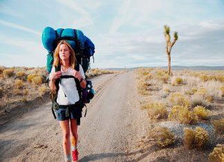 Mơ thấy đi du lịch đánh con gì?