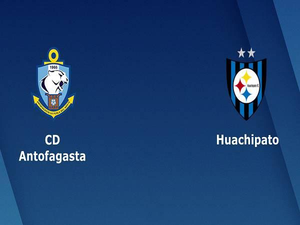 Soi kèo Antofagasta vs Huachipato – 20h30 14/12, VĐQG Chile