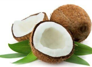 Mơ thấy quả dừa thối hỏng đánh con gì?