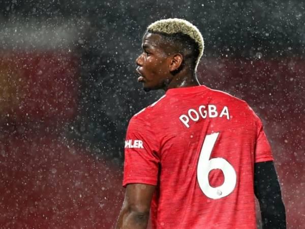 Tiểu sử cầu thủ Paul Pogba – Tiền vệ xuất sắc nhất nước Pháp