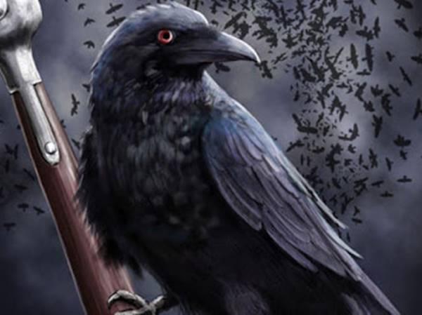 Mơ thấy quạ có phải điềm xui xẻo? Đánh con số mấy?