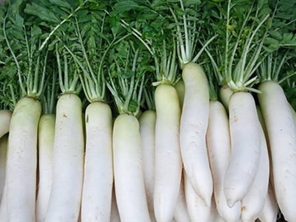 Giải mã giấc mơ thấy củ cải trắng là điềm báo trước gì?