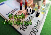 Cao Viet Net chia sẻ bí quyết thắng cá độ bóng đá
